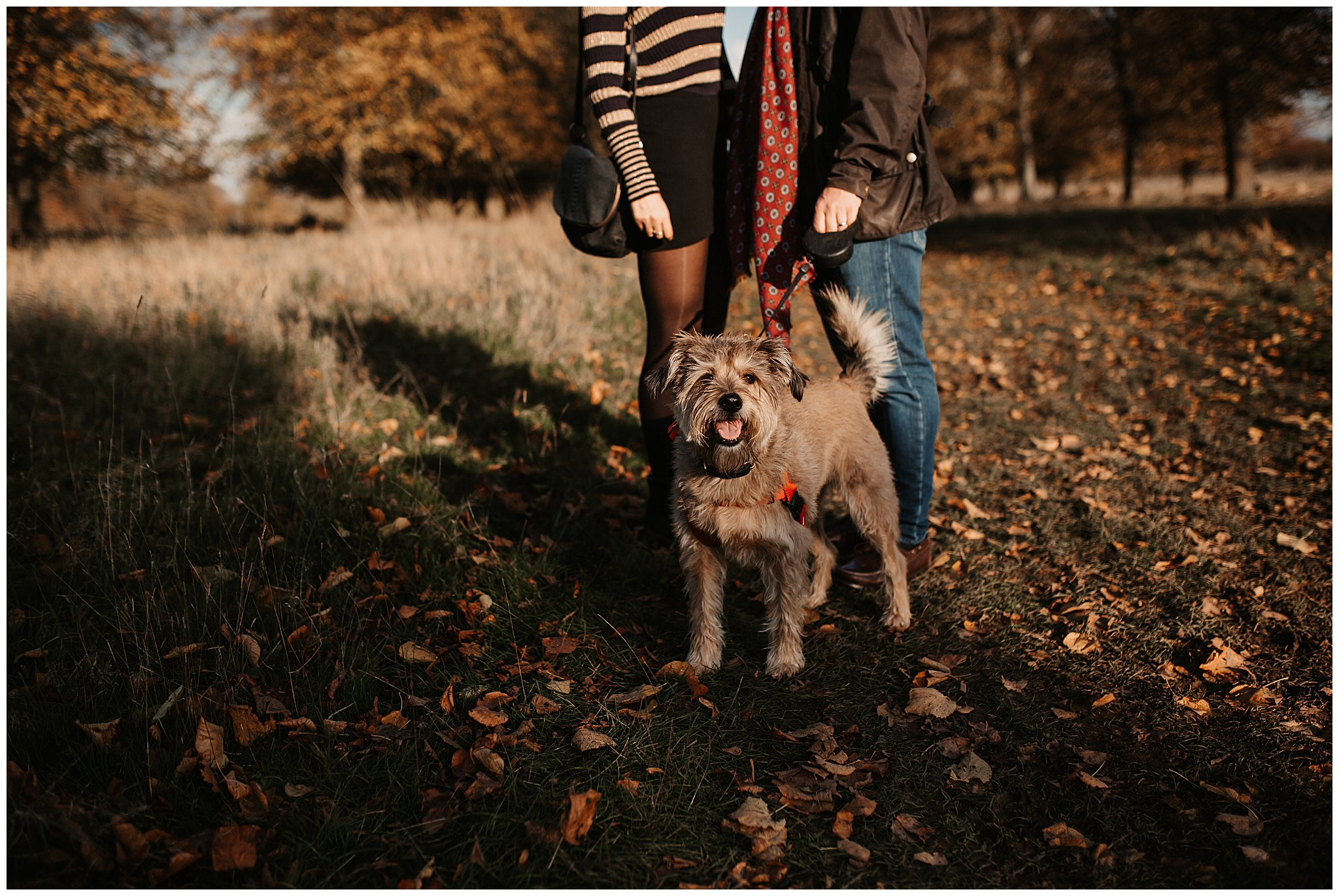 Charlie & Laurence Autumn Bushy Park Couple Shoot-20.jpg